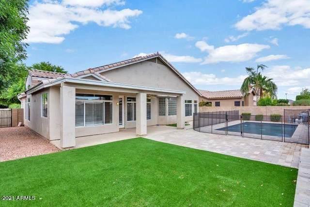 6816 W Williams Drive, Glendale, AZ 85310 (MLS #6248342) :: Yost Realty Group at RE/MAX Casa Grande