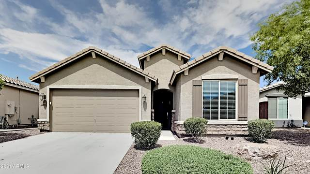 35686 N Pommel Place, Queen Creek, AZ 85142 (MLS #6248358) :: Yost Realty Group at RE/MAX Casa Grande