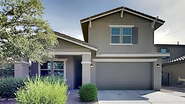 12211 W Desert Moon Way, Peoria, AZ 85383 (MLS #6248359) :: Yost Realty Group at RE/MAX Casa Grande