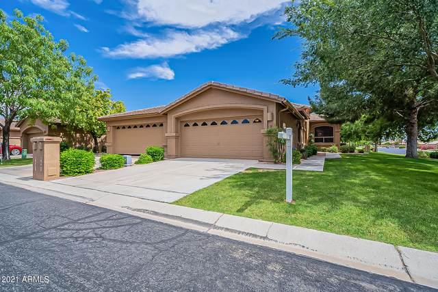 9603 E Rocky Lake Drive, Sun Lakes, AZ 85248 (MLS #6248375) :: Midland Real Estate Alliance