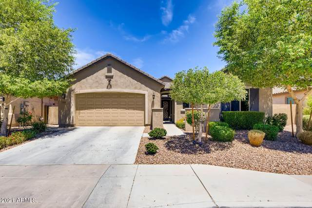 19784 W Sherman Street, Buckeye, AZ 85326 (MLS #6248390) :: Klaus Team Real Estate Solutions
