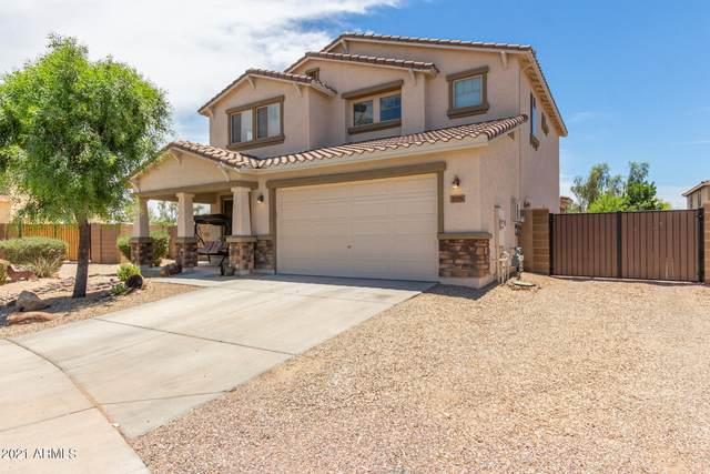 17275 W Fetlock Trail, Surprise, AZ 85387 (MLS #6248413) :: Power Realty Group Model Home Center