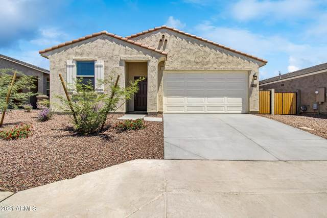 18344 W Puget Avenue, Waddell, AZ 85355 (MLS #6248418) :: The Everest Team at eXp Realty