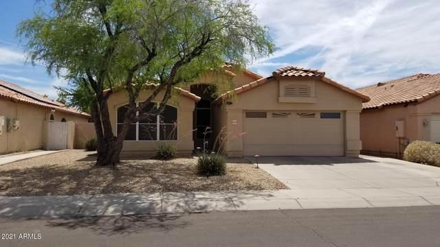 10319 N 57TH Drive, Glendale, AZ 85302 (MLS #6248433) :: Yost Realty Group at RE/MAX Casa Grande
