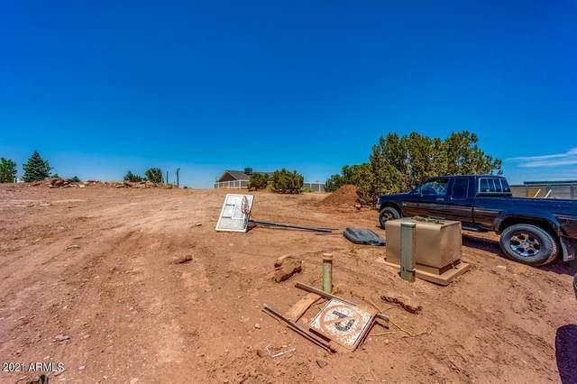 251 S Crystal Circle, Taylor, AZ 85939 (MLS #6248438) :: The Newman Team