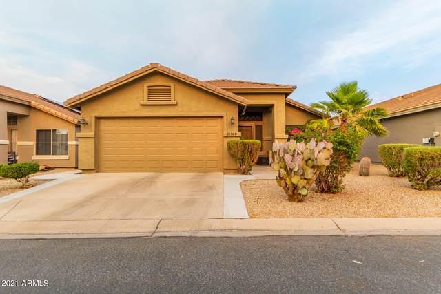 31308 N Claridge Circle, San Tan Valley, AZ 85143 (MLS #6248439) :: CANAM Realty Group