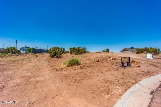 246 S Crystal Circle, Taylor, AZ 85939 (MLS #6248452) :: Executive Realty Advisors