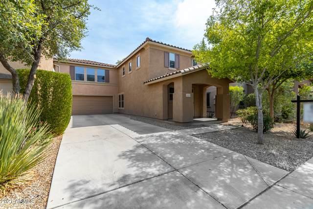 18535 W Udall Drive, Surprise, AZ 85374 (MLS #6248476) :: Dave Fernandez Team | HomeSmart