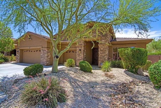2343 W Maya Way, Phoenix, AZ 85085 (MLS #6248504) :: Yost Realty Group at RE/MAX Casa Grande
