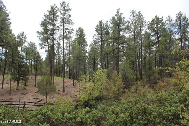 3109 E Game Trail, Payson, AZ 85541 (MLS #6248527) :: Yost Realty Group at RE/MAX Casa Grande