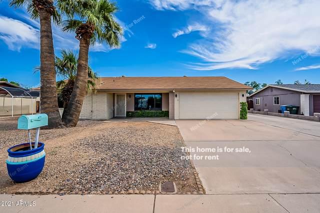 3617 W Voltaire Avenue, Phoenix, AZ 85029 (MLS #6248530) :: Executive Realty Advisors