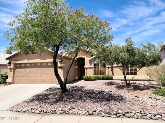 19016 N 24TH Place, Phoenix, AZ 85050 (MLS #6248632) :: Dave Fernandez Team   HomeSmart