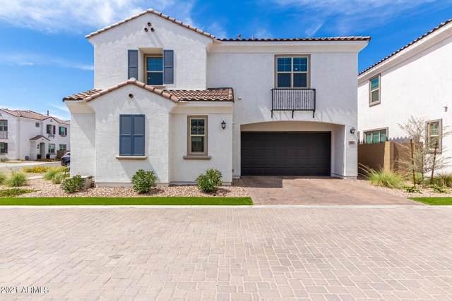 665 N Bay Drive, Gilbert, AZ 85233 (MLS #6248633) :: Yost Realty Group at RE/MAX Casa Grande