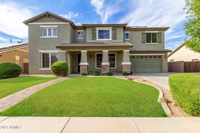 14406 W Port Royale Lane, Surprise, AZ 85379 (MLS #6248657) :: Arizona Home Group