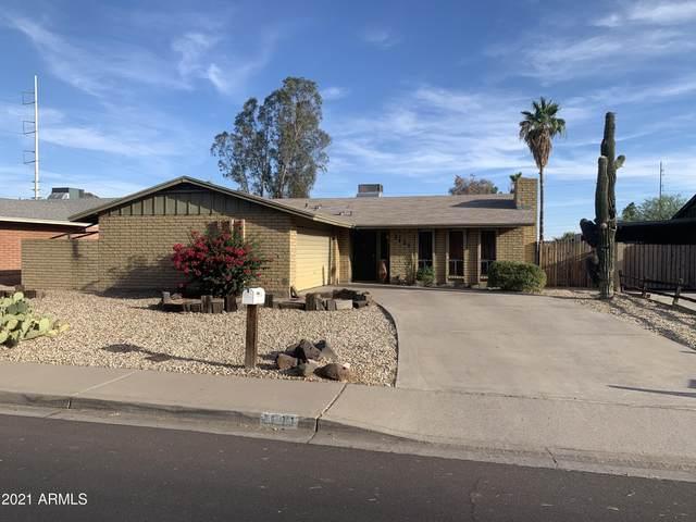 1131 E Cheryl Drive, Phoenix, AZ 85020 (MLS #6248661) :: The Copa Team | The Maricopa Real Estate Company
