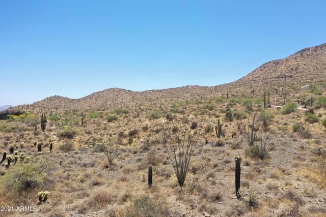 14219 E White Wing Court, Fountain Hills, AZ 85268 (MLS #6248694) :: Fred Delgado Real Estate Group
