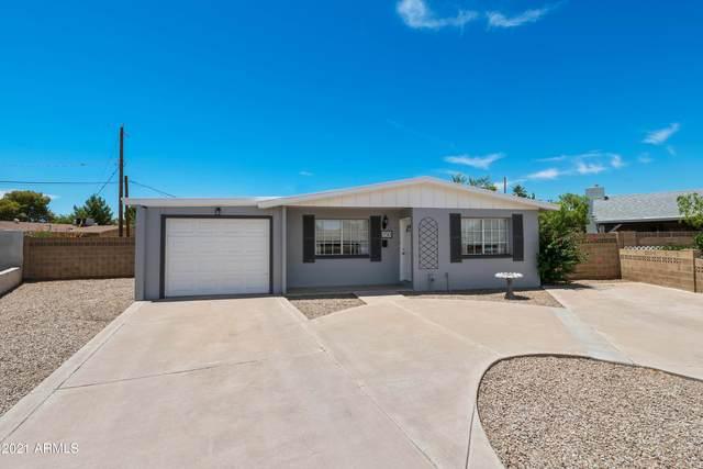 250 E Hampton Avenue, Mesa, AZ 85210 (MLS #6248775) :: CANAM Realty Group