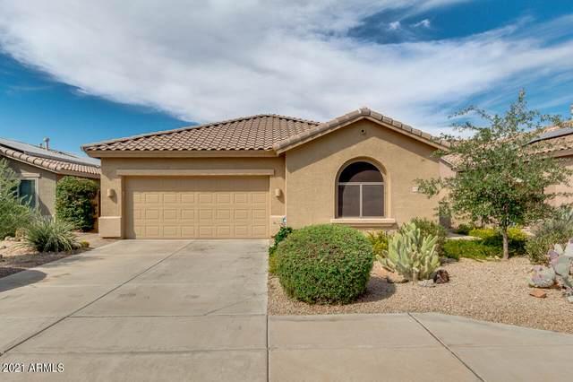 17646 W Desert View Lane, Goodyear, AZ 85338 (MLS #6248839) :: Conway Real Estate