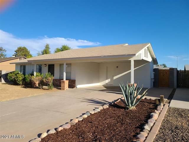 2463 E Holmes Avenue, Mesa, AZ 85204 (MLS #6248840) :: Yost Realty Group at RE/MAX Casa Grande
