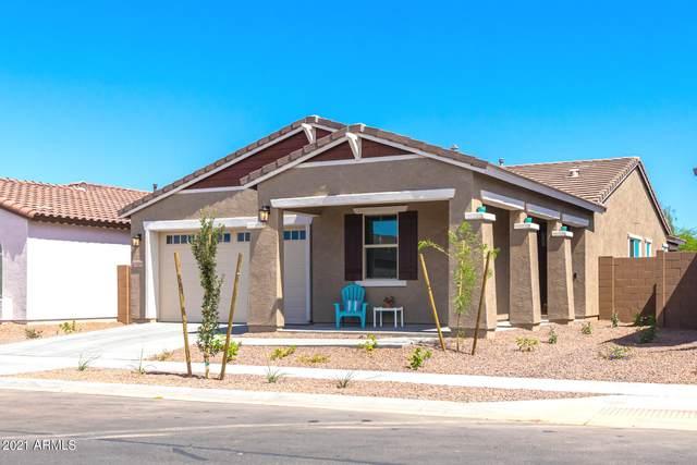 1326 E Glass Lane, Phoenix, AZ 85042 (MLS #6248844) :: Selling AZ Homes Team