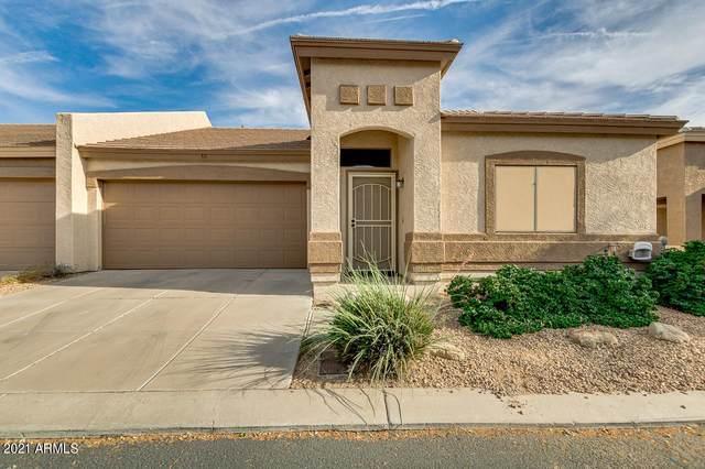 44 S Greenfield Road #14, Mesa, AZ 85206 (MLS #6248893) :: Yost Realty Group at RE/MAX Casa Grande