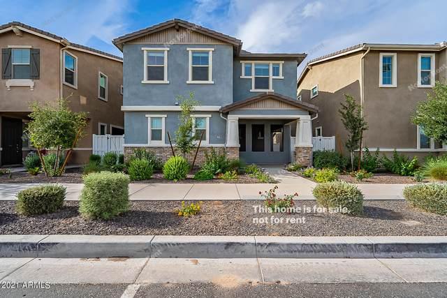3885 E Stiles Lane, Gilbert, AZ 85295 (MLS #6248923) :: Conway Real Estate