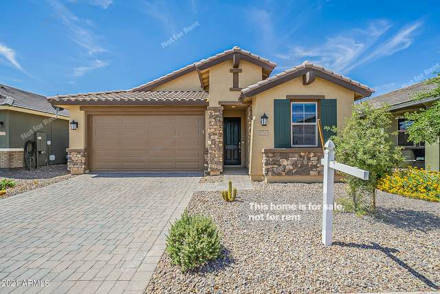 41343 W Palmyra Lane, Maricopa, AZ 85138 (MLS #6248933) :: Power Realty Group Model Home Center