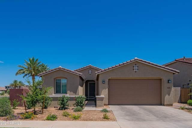 9728 E Tripoli Avenue, Mesa, AZ 85212 (MLS #6248939) :: Klaus Team Real Estate Solutions