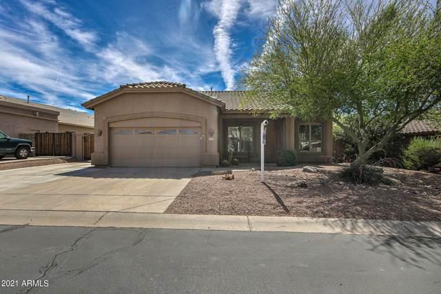 2355 N Malachite, Mesa, AZ 85207 (MLS #6248957) :: Power Realty Group Model Home Center