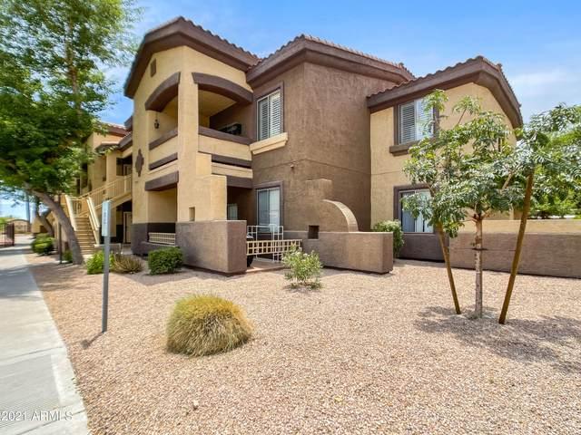 10136 E Southern Avenue #2045, Mesa, AZ 85210 (MLS #6248966) :: Klaus Team Real Estate Solutions
