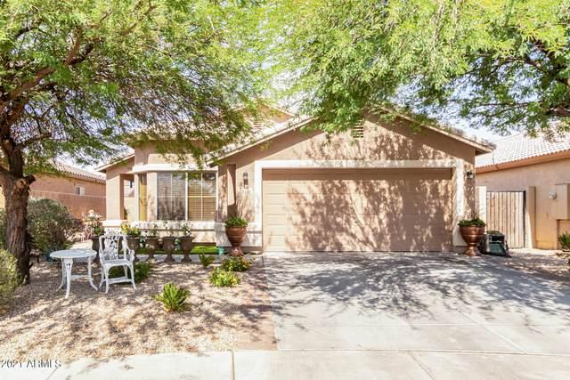 2510 S 104TH Lane, Tolleson, AZ 85353 (MLS #6248983) :: Yost Realty Group at RE/MAX Casa Grande
