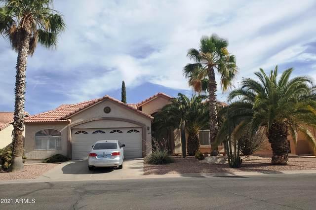1829 E Gleneagle Drive, Chandler, AZ 85249 (#6248984) :: The Josh Berkley Team