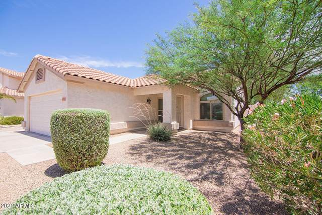 2071 S Central Court, Chandler, AZ 85286 (MLS #6248996) :: Yost Realty Group at RE/MAX Casa Grande