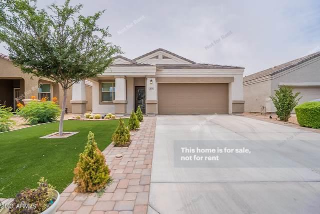 4971 E Black Opal Lane, San Tan Valley, AZ 85143 (MLS #6249000) :: Arizona Home Group