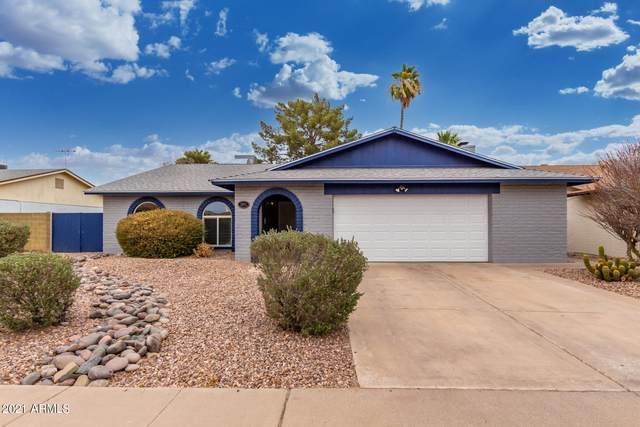 1064 W Portobello Avenue, Mesa, AZ 85210 (MLS #6249027) :: The Helping Hands Team