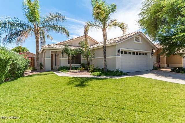 4035 E Libra Avenue, Gilbert, AZ 85234 (MLS #6249030) :: Yost Realty Group at RE/MAX Casa Grande