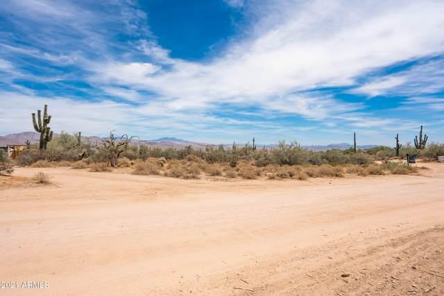 31xxx N 164th Street, Scottsdale, AZ 85262 (MLS #6249055) :: Nate Martinez Team