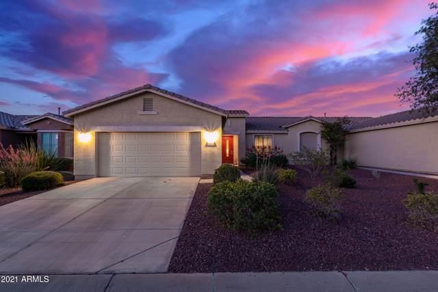 20635 N Lemon Drop Drive, Maricopa, AZ 85138 (MLS #6249072) :: John Hogen | Realty ONE Group
