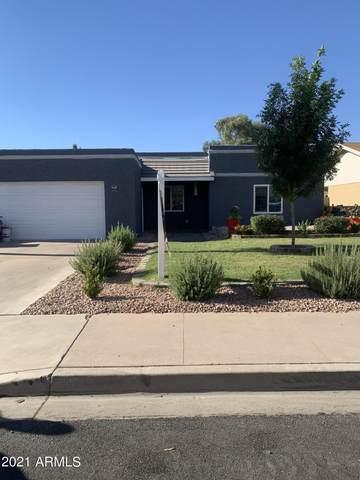 1238 E Mclellan Road, Mesa, AZ 85203 (MLS #6249087) :: Yost Realty Group at RE/MAX Casa Grande