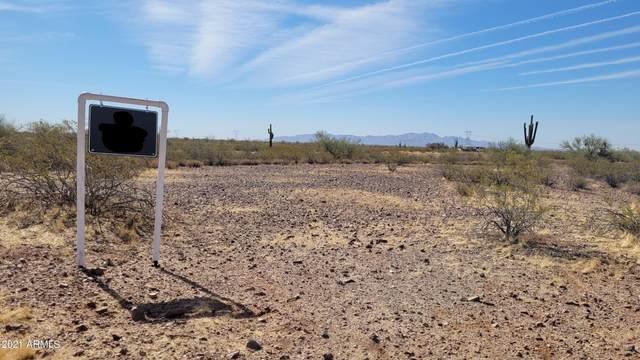 325XX W Painted Wagon Road, Wittmann, AZ 85361 (MLS #6249088) :: CANAM Realty Group