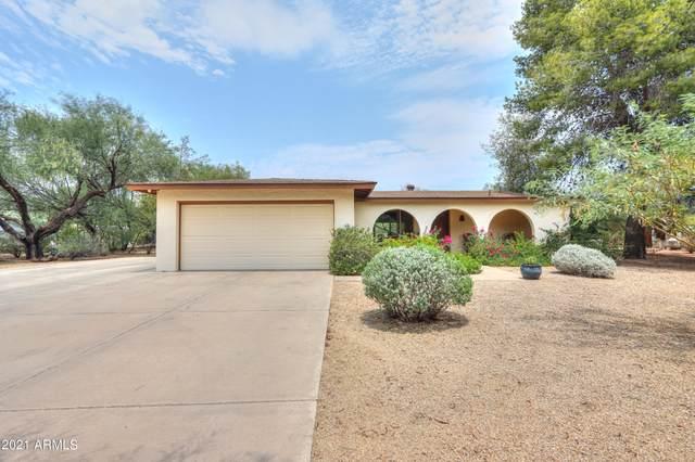 7336 E Jenan Drive, Scottsdale, AZ 85260 (MLS #6249094) :: The Daniel Montez Real Estate Group