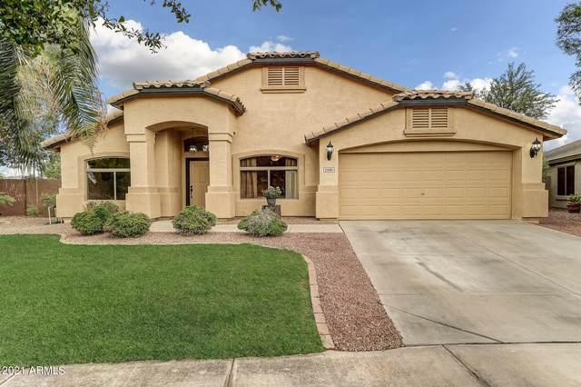 21081 E Calle De Flores, Queen Creek, AZ 85142 (MLS #6249101) :: Dijkstra & Co.
