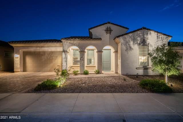 22428 N 30TH Place, Phoenix, AZ 85050 (MLS #6249110) :: Dave Fernandez Team | HomeSmart