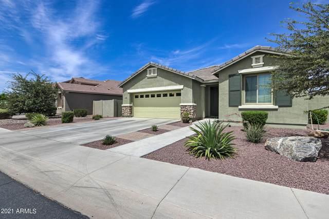 3036 E Russell Street, Mesa, AZ 85213 (MLS #6249149) :: Yost Realty Group at RE/MAX Casa Grande