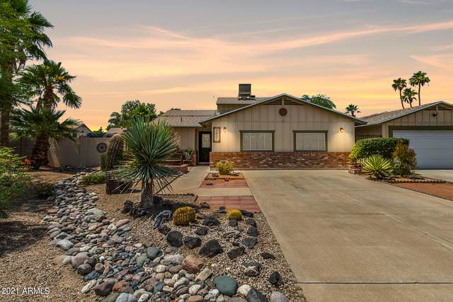 4831 W Kimberly Way, Glendale, AZ 85308 (MLS #6249155) :: Nate Martinez Team