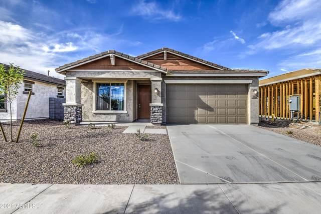 10848 W Marshall Avenue, Phoenix, AZ 85037 (MLS #6249178) :: Midland Real Estate Alliance