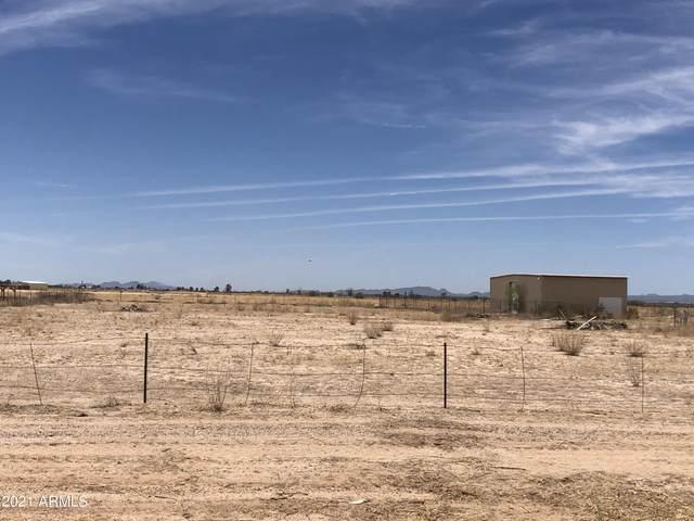 33007 W Peters And Nall Road, Maricopa, AZ 85138 (MLS #6249215) :: ASAP Realty