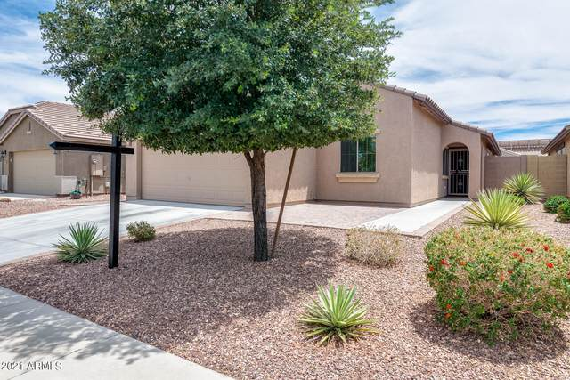 18473 W Young Street, Surprise, AZ 85388 (MLS #6249234) :: Yost Realty Group at RE/MAX Casa Grande