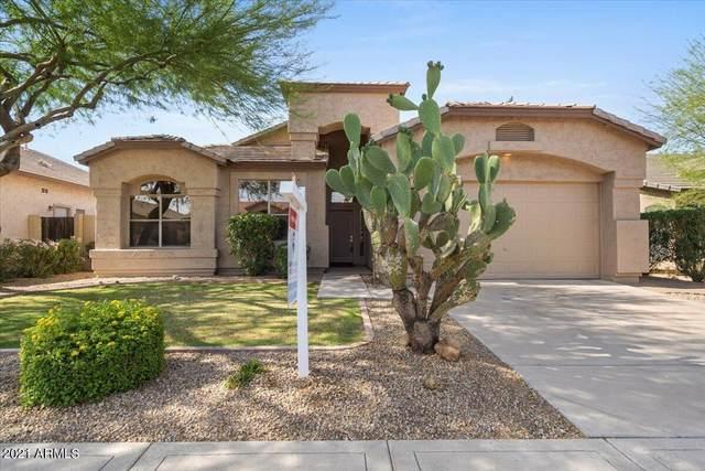 7227 E Overlook Drive, Scottsdale, AZ 85255 (MLS #6249244) :: Yost Realty Group at RE/MAX Casa Grande