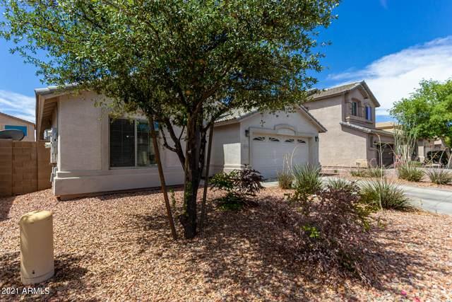 43843 W Roth Road, Maricopa, AZ 85138 (MLS #6249264) :: Power Realty Group Model Home Center